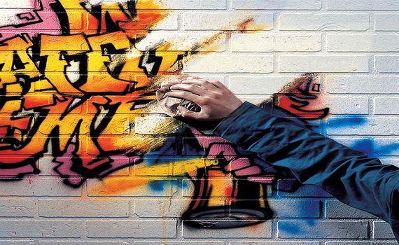 Graffiti Removal Lower North Shore