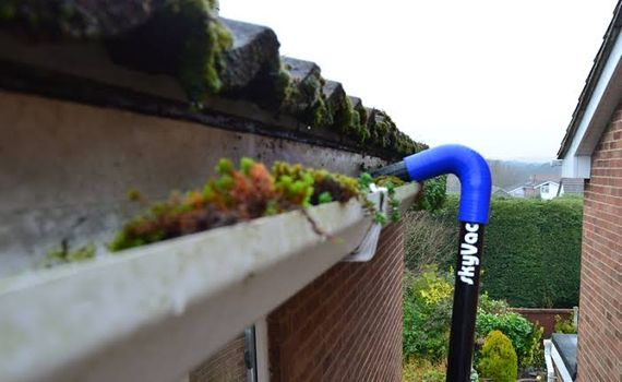 Gutter Cleaning Lower North Shore