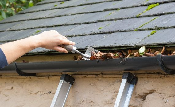 gutter cleaning sutherland shire